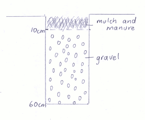 Diagram of a vertical swale